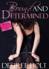 Bound and Determined: Toys-4-Us Series - Desiree Holt