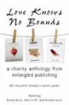 Love Knows No Bounds - Boone Brux,  Brooke Moss,  Nina Croft