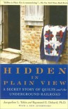 Hidden in Plain View: A Secret Story of Quilts and the Underground Railroad - Jacqueline L Tobin, Raymond G Dobard