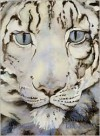The Snow Leopard - Jackie Morris