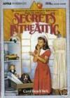 Secrets in the Attic - Carol Beach York