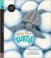 One Tiny Turtle with Audio: Read, Listen, & Wonder - Nicola Davies, Jane Chapman