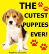 The Cutest Puppies Ever - Sharlene Alexander