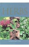 A Pocket Guide to Herbs - Jenny Linford