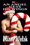 An Angel Gets His Wings - Missy Welsh