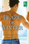 Blaze of Winter (Star Harbor, #2) - Elisabeth Barrett
