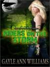 Riders On the Storm (Tsunami Blue, #2) - Gayle Ann Williams