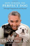 How to Raise the Perfect Dog: Through Puppyhood and Beyond - Cesar Millan, Melissa Jo Peltier