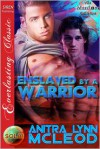 Enslaved by a Warrior - Anitra Lynn McLeod