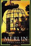 Merlin: The Young Merlin Trilogy, Book Three - Jane Yolen