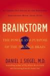 Brainstorm: The Power and Purpose of the Teenage Brain - Daniel J. Siegel