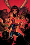 Marvel Knights Spider-Man Vol. 3: The Last Stand - Mark Millar, Terry Dodson