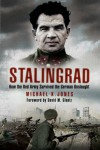 Stalingrad: How the Red Army Survived the German Onslaught - Michael K. Jones