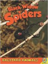 Black Widow Spiders - Megan Kopp
