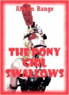 The Pony Girl Swallows: A Rough Anal Sex BDSM Erotica Story - Allysin Range