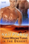 Three Wrong Turns in the Desert - Neil Plakcy