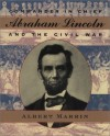 Commander in Chief: Abraham Lincoln and the Civil War - Albert Marrin