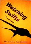 Watching Swifts - R.J. Askew