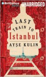 Last Train to Istanbul - Ayse Kulin,  John W. Baker (Translator)