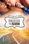 Driving Into the Sun - Dev Bentham