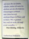 Hölderlin. Ein Roman - Peter Härtling
