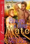 Healing a Hurt Mate - Anitra Lynn McLeod