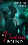 In Darkness Bound (The Society #1) - Christine  Price