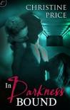 In Darkness Bound (The Society #1) - Christine  Price