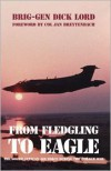 From Fledgling to Eagle: The South African Air Force During the Border War - Dick Lord
