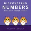 Discovering Numbers - Neepin Auger