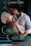 Council Courtship (Fairyproof 2) - Constance Phillips