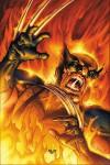 Wolverine: Firebreak #1 - Mike Carey