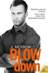 Blow Down - J.L. Merrow