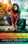 The Witches of Echo Park - Amber Benson