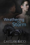 Weathering the Storm - Caitlin Ricci