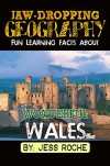 Jaw-Dropping Geography: Fun Learning Facts About Wonderful Wales: Illustrated Fun Learning For Kids - Jess Roche