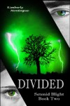 Divided - Kimberly Montague