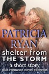 Shelter from the Storm, a short story - Patricia Ryan