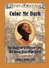 Color Me Dark: The Diary of Nellie Lee Love, the Great Migration North, Chicago, Illinois, 1919 - Patricia C. McKissack