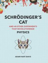 Schroedinger's Cat: And 49 Other Experiments That Revolutionised Physics (Great Experiments) - Adam Hart-Davies