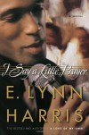 I Say a Little Prayer - E. Lynn Harris
