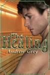 The Healing - Andrew  Grey