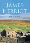 Vet in a Spin - James Herriot