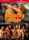 Running Wilde (The Brothers of Wilde, Nevada #3) - Chloe Lang