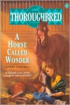 Horse Called Wonder (Thoroughbred Series #1) -