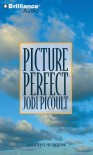 Picture Perfect - Sandra Burr, Jodi Picoult