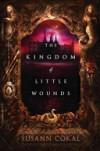 The Kingdom of Little Wounds - Susann Cokal