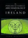 The Prehistoric Archaeology Of Ireland - John Waddell