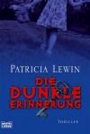Die dunkle Erinnerung - Patricia Lewin