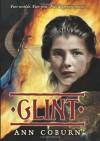 Glint - Ann Coburn